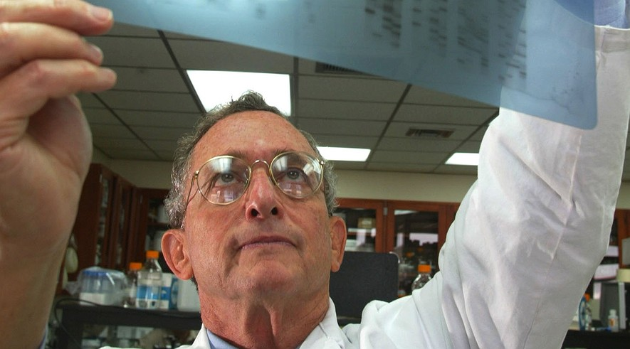Dr. Louis J. Elsas, head of the University of Miami's Dr. John T. Macdonald Foundation Center for Medical Genetics, in Florida, studies a gene sequence he believes may predict illness before symptoms occur, on Aug. 29, 2003.