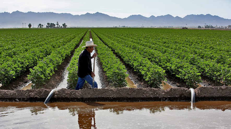 Pedro Figueroa irrigates a cotton field in Yuma, Arizona, in the spring. Seven states depend on water from the Colorado River, and a debate is brewing over the future of water rights.