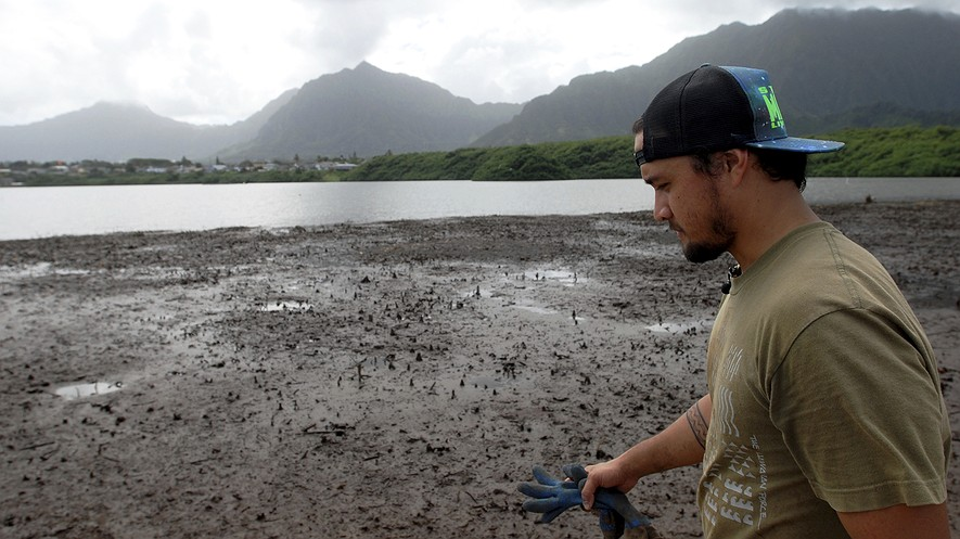 TOP: Conservation International's Luka Mossman, who restores and researches Native Hawaiian fishponds, walks near Heeia fishpond in Kaneohe, Hawaii. As a Native Hawaiian, he grew up around this type of fishpond. Photo: AP Photo/Caleb Jones. BELOW: Open-Ocean Aquaculture can have a number of adverse impacts on the environment.