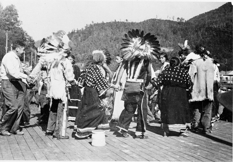 native american reports 2010