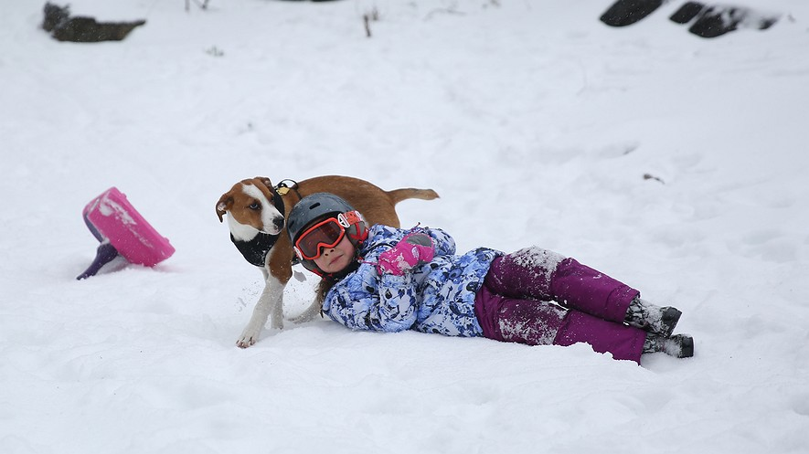A girl and her dog enjoy the snow in Manhattan, New York City, March 14, 2017, after a powerful snowstorm hit the Northeast. Photo by: Mohammed Elshamy/Anadolu Agency/Getty Images