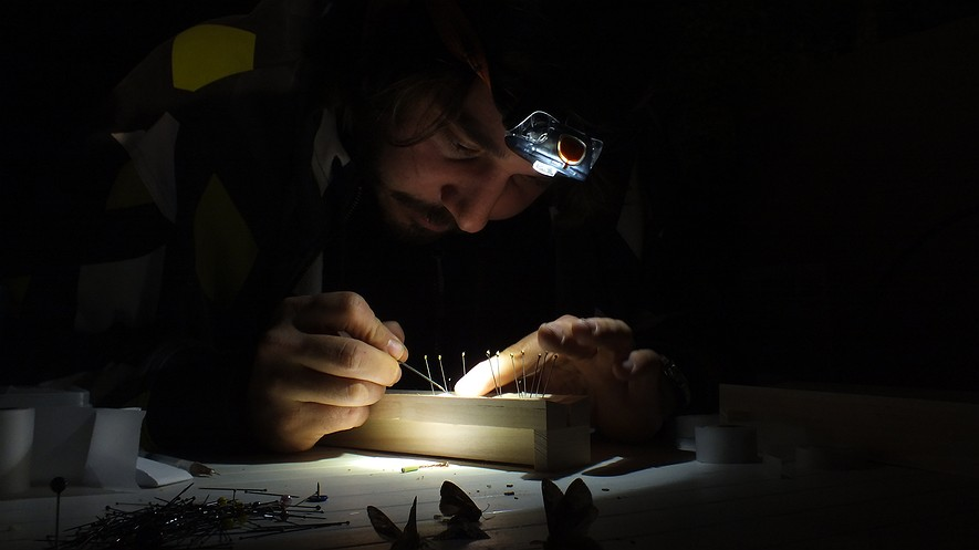 An entomologist prepares moths caught at night in Yonne, France. Photo by: Matthieu Gauvain/Wikimedia.