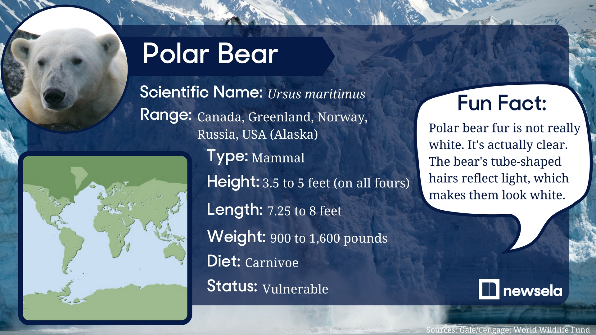 an analysis of the polar bears in the endangered species act Polar bears have it rough nrdc, and greenpeace, polar bears were given threatened species status under the us endangered species act in 2008.