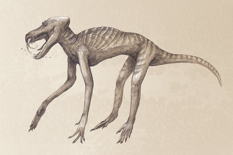 Scientists Reveal What Dinosaurs Really Looked Like And It S Actually Weird