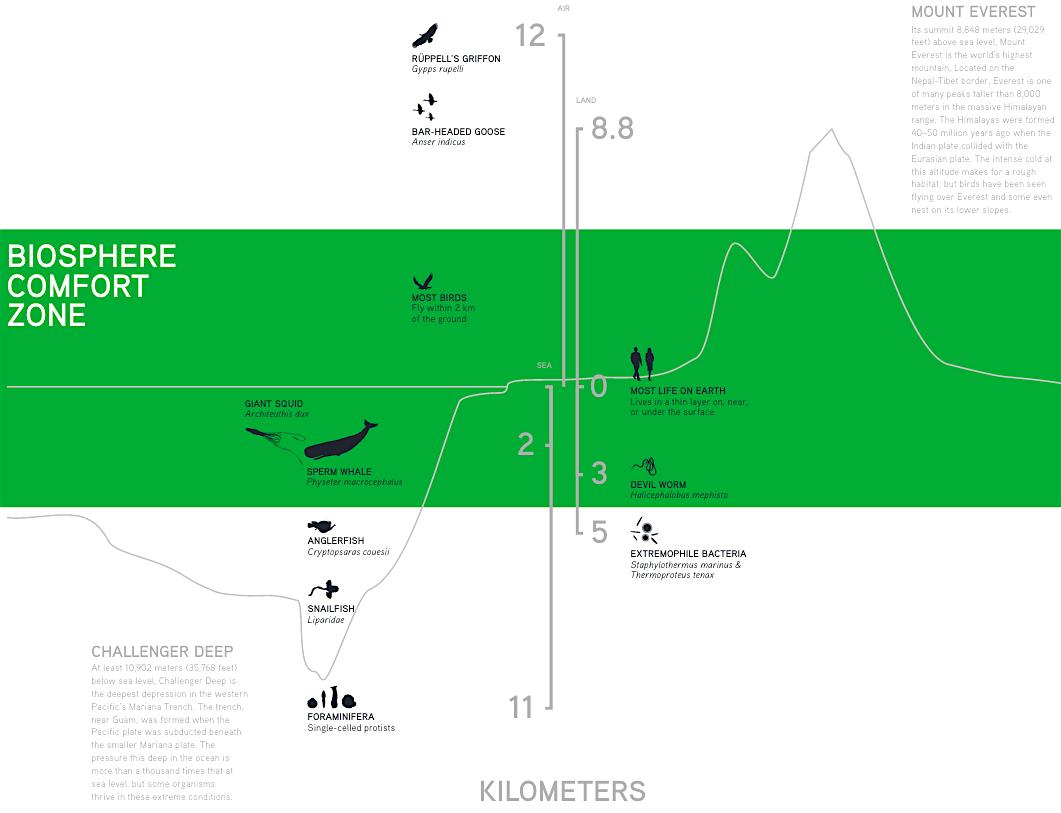 Newsela What Is the Biosphere – Biosphere Worksheet