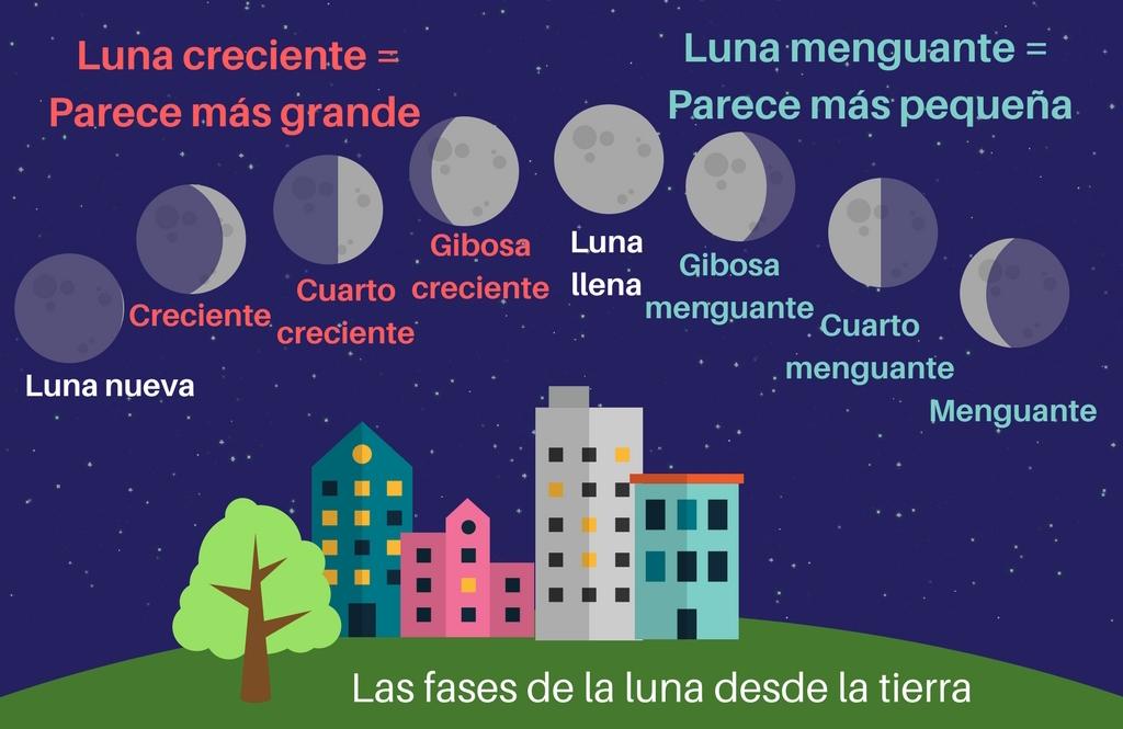 Newsela las fases de la luna Estamos en luna menguante