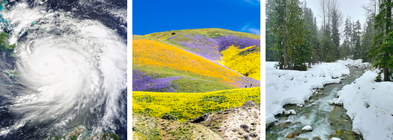(From Left) Hurricane Matthew hits the East Coast, Wildflower superbloom graces California hills, more snow than usual in the Sierra Nevadas. Photos: NASA/BLM, Public Domain.